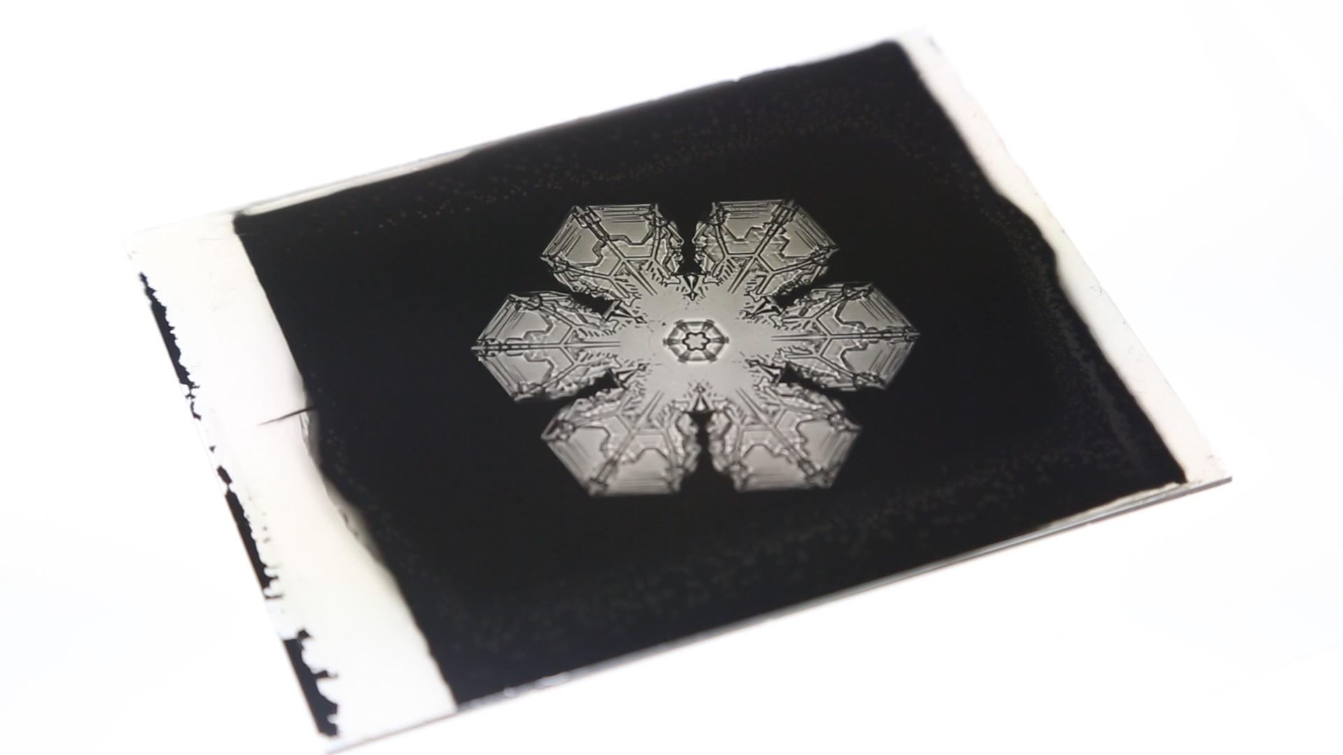 William Bentley S Photographs Of Snowflakes Idaho Statesman