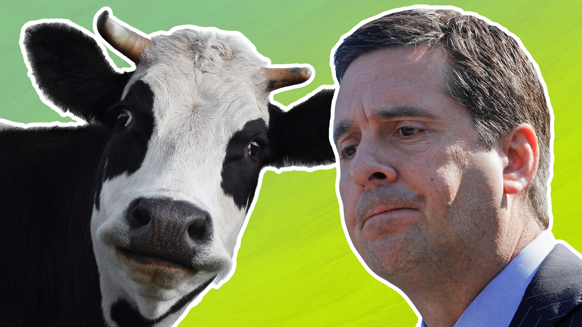 Why Devin Nunes's laughable cow lawsuit is no laughing matter