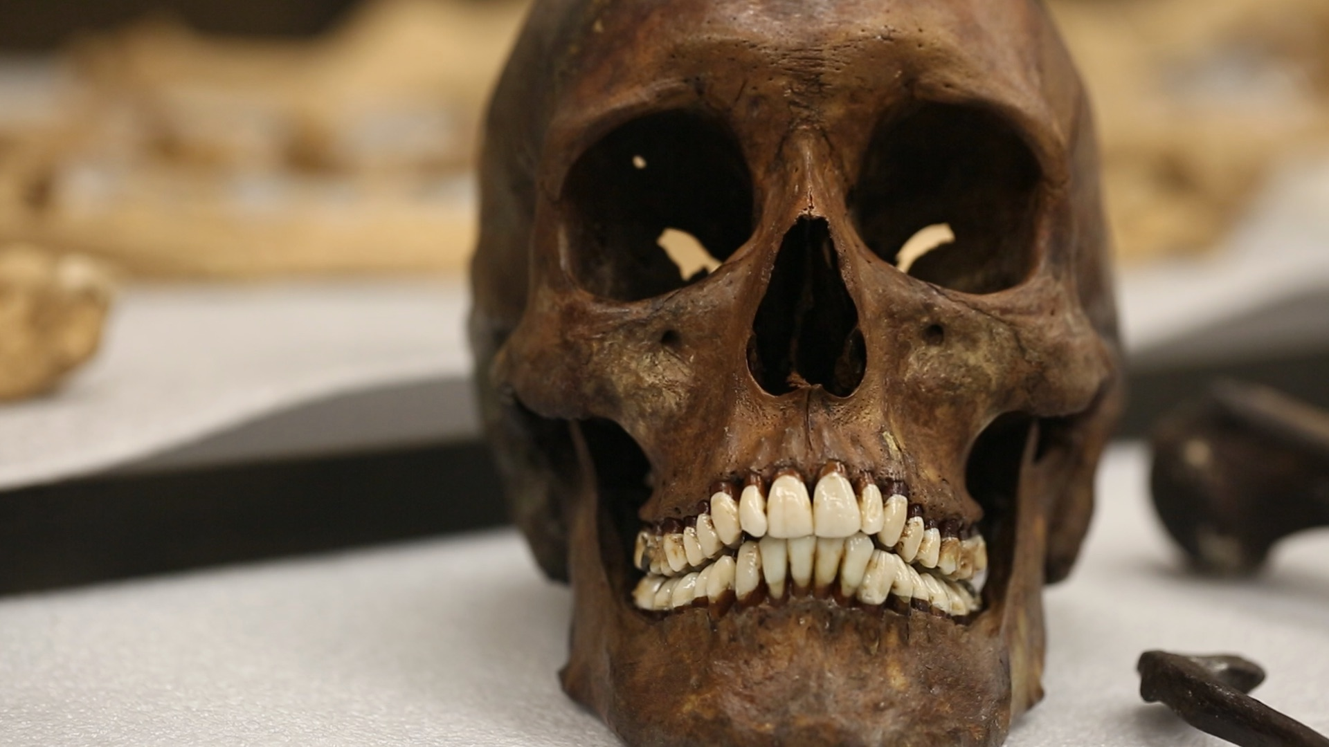 This Smithsonian scientist's death was a mystery; 150 years later, his skeleton helped solve it