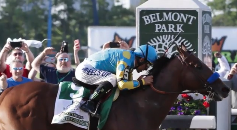 American Pharoah has officially joined the Resistance