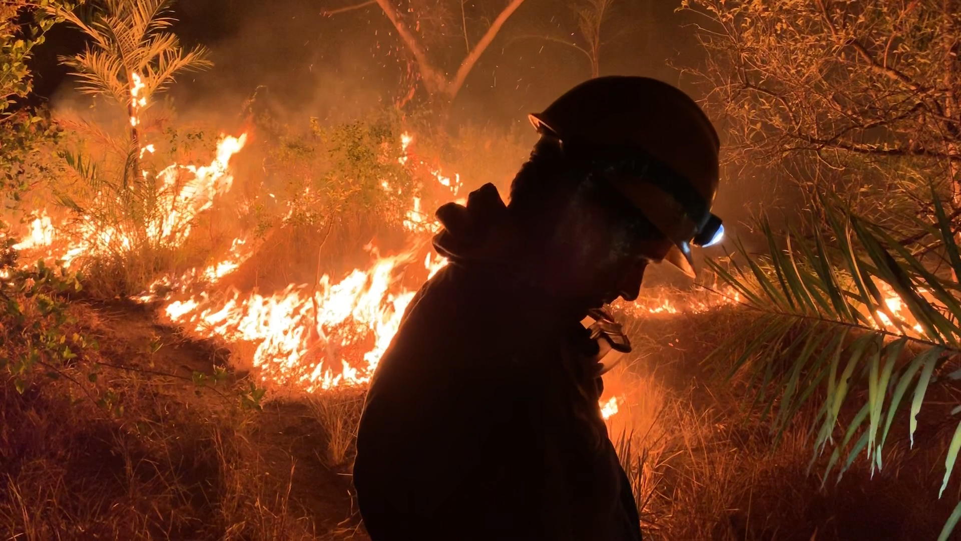 Arsonists are torching the Amazon. This elite team of firefighters stands in their way.