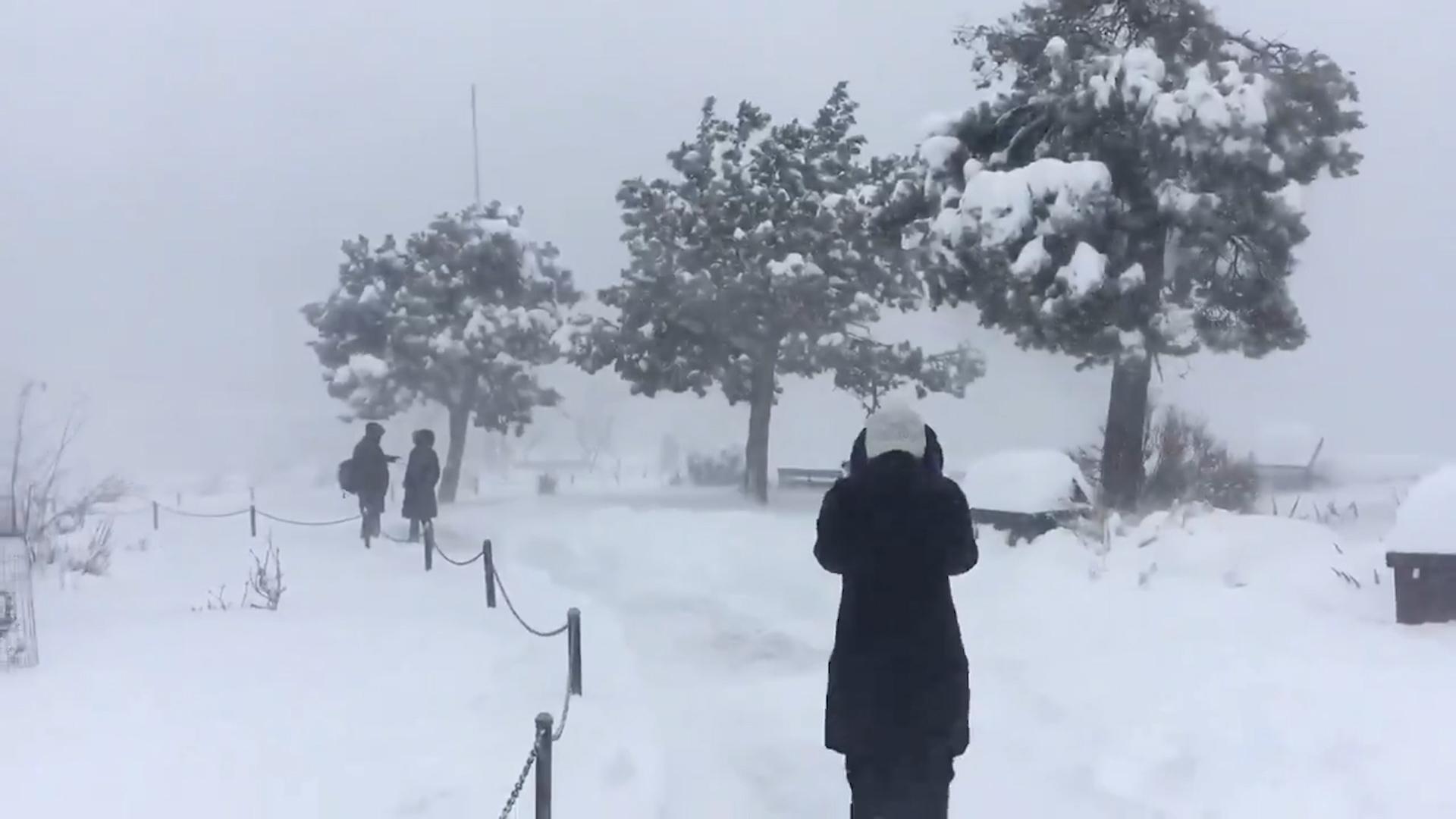 Rüyada Çok Sağanak Bir Yağmur Kar Dolu Yağdığını Yolda Görmek