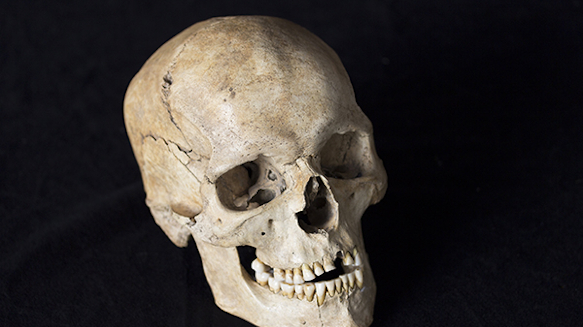 Ice Age Europeans had some serious drama going on, according to their genomes