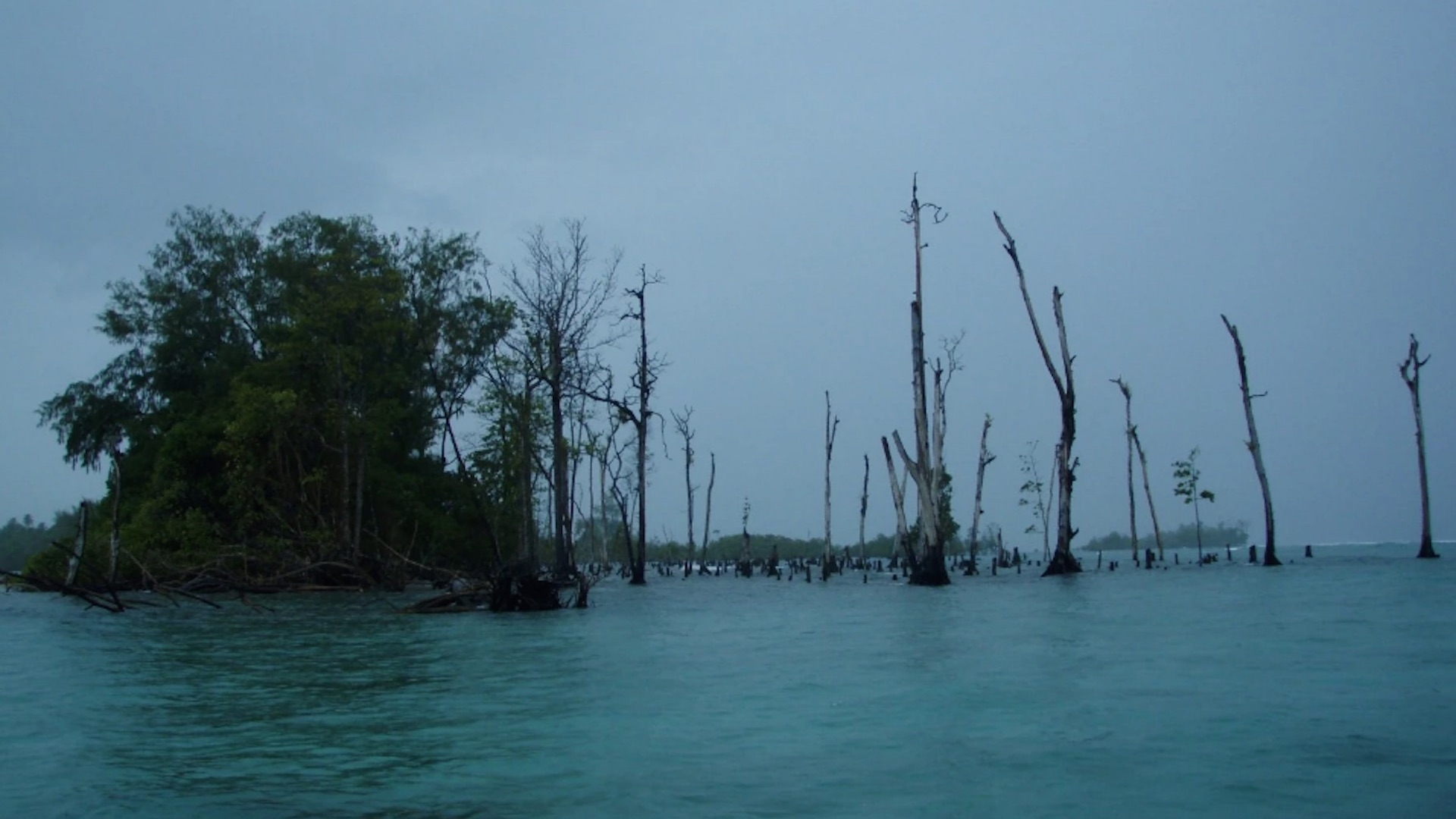 After the Pacific Ocean swallows villages and five Solomon Islands, a study blames climate change